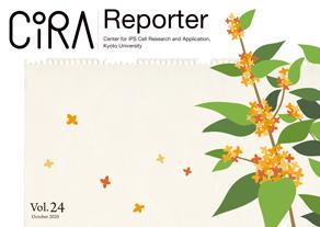 CiRA Reporter Vol.24