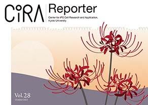 CiRA Reporter Vol.28